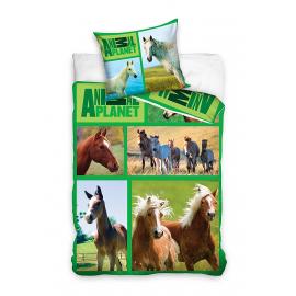 Cavalli HORSE Riding Animal Planet set lenzuola letto singolo COPRIPIUMINO 160x200cm 100% cotone bambini ragazzi