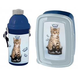 Happy Cat Breakfast Set Storage Box, Automatic Water Bottle School