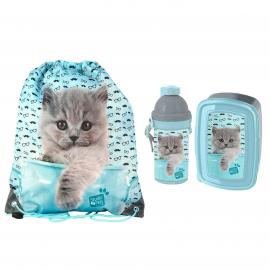 Cat Rachaelhale Set Bag Bag Backpack Flat Box Lunch Box Bottle 500ml