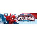 Spider-Man scuola